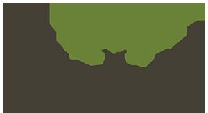 Thrive Agency Logo